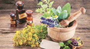 Medical Plants